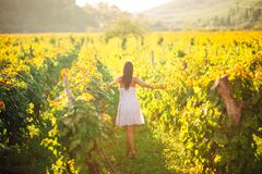 Smiling elegant woman in nature.Joy and happiness.Serene female in wine grape field in sunset.Wine growing field.Agricultural tour. Ism.Visiting winery and stock images