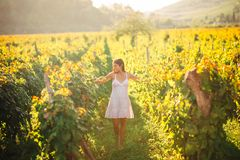 Smiling elegant woman in nature.Joy and happiness.Serene female in wine grape field in sunset.Wine growing field.Agricultural tour. Ism.Visiting winery and Stock Photo