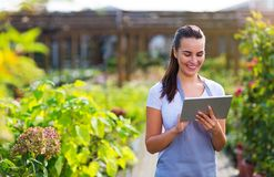 Garden center worker using digital tablet. Smiling employee in garden center Royalty Free Stock Photography