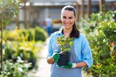 Woman working in garden center Stock Photos