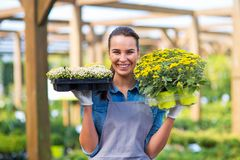 Woman working in garden center Royalty Free Stock Images