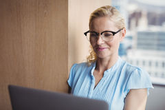 Smiling Executive Using Laptop Stock Photos