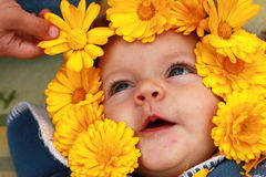 Smiling eyes newborn baby in the flowers Stock Photo