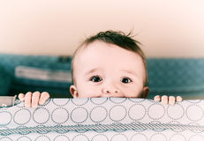 Smiling Eyes - Retro Royalty Free Stock Images