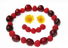 Smiling face, formed of berries and flowers. Smiling face, formed of cherries, raspberries and flowers royalty free stock photography
