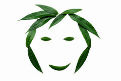 A smiling face, lined with green leaves. The concept of naturalness and love of nature. Smiling face, lined with green leaves. The concept of naturalness and Royalty Free Stock Photography