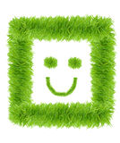 Smiling face made from green grass isolated Stock Photography
