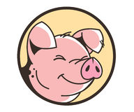 Smiling face of a pig Stock Photos