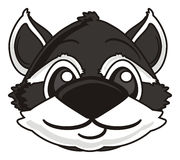 Smiling face raccoons Royalty Free Stock Images