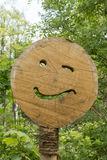 Smiling face on tree pit Royalty Free Stock Photos