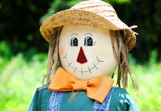 Free Smiling Fall Scarecrow Face Stock Photos - 10636403