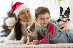 Smiling family and dogs lying on carpet at home by Christmas tree. Smiling family mother, son and dogs lying on carpet at home by Christmas tree royalty free stock images