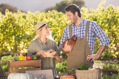 Smiling farmer couple holding chicken and eggs Stock Images