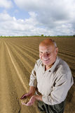 Smiling farmer cupping wheat grains in ploughed field Royalty Free Stock Photo
