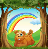 A smiling fat bear at the forest and a rainbow in the sky Royalty Free Stock Photography