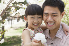 Smiling father and daughter enjoying the cherry blossoms on the tree in the park in springtime, daughter holding a flower Stock Photo