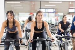 Female Clients Riding Exercise Bikes In Health Club. Smiling female clients riding exercise bikes while looking away in health club royalty free stock image