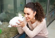 Emale customer choose Blanc de Hotot rabbit. Smiling female customer choose Blanc de Hotot rabbit Royalty Free Stock Photo