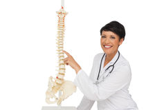 Smiling female doctor pointing at skeleton model Stock Image