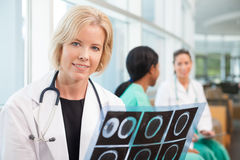Smiling female doctor with scan sitting with female nurses Stock Photography
