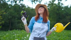 Smiling female gardener posing with zucchini plants and looking at camera, farming and gardening concept.  stock video footage