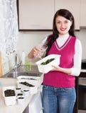 Smiling female gardener watering seedlings Royalty Free Stock Images
