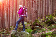 Smiling Female Hiker Staying in Deep Old Forest Royalty Free Stock Photos