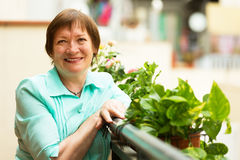 Smiling  female pensioner resting at balcony Stock Image