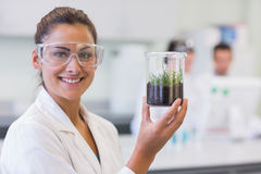 Smiling female scientist analyzing a young plant at lab Royalty Free Stock Photo