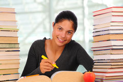 Smiling Female Student with Books Royalty Free Stock Images
