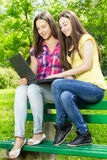 Smiling female students using laptop Royalty Free Stock Photo