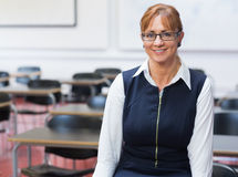 Smiling female teacher in the class room Stock Image
