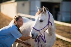 Free Smiling Female Vet Checking Horse Royalty Free Stock Image - 97408156