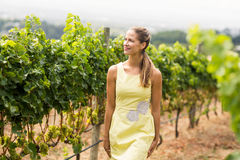 Smiling female vintner looking at grape crop Royalty Free Stock Photography