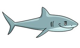Smiling ferocious shark Stock Images