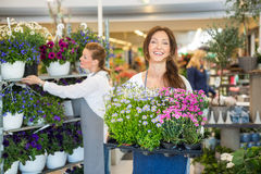 Smiling Florist Carrying Crate Full Of Flower Stock Image
