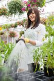 Smiling Florist Watering Plants In Greenhouse Royalty Free Stock Images