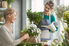 Smiling florists at work Stock Images
