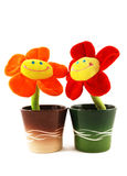 Smiling flowers Stock Photography