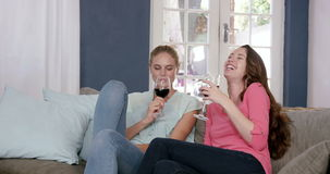 Smiling friend toasting with red wine. On the couch at home stock video