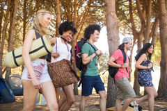 Smiling friends at campsite Royalty Free Stock Photo