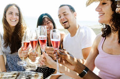 Smiling friends celebrating a special occasion with drinks Stock Image