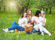 Smiling friends drinking champagne on picnic Stock Photos