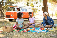 Smiling friends having food while sitting on picnic blanket Royalty Free Stock Photo