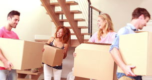 Smiling friends moving boxes together. At new home stock footage