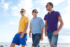 Smiling friends in sunglasses walking along beach Royalty Free Stock Image
