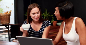Smiling friends using laptop. In cafe stock footage