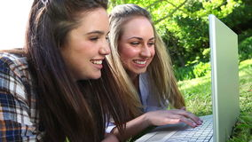 Smiling friends using a laptop stock footage