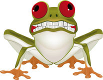 Smiling frog. With a animals aquatic stock illustration