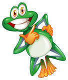 A smiling frog Stock Image